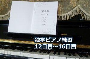 ショパン「別れの曲」初級編を演奏~ピアノ初心者の練習日記
