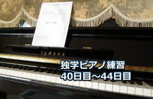 「乙女の祈り」初級編を演奏~ピアノ初心者の練習日記