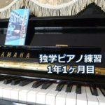 L'Arc-en-Ciel「DIVE TO BLUE」を演奏~独学ピアノ練習雑記