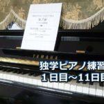 ピアノ初心者の独学・練習日記~大人の初心者用ピアノ教材を実践