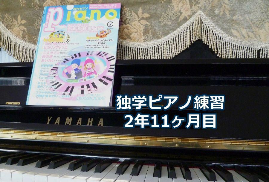 「渚のアデリーヌ」上級編を演奏~独学ピアノ練習雑記
