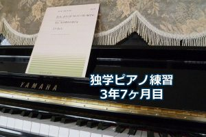 バッハ「主よ、人の望みの喜びよ」ヘス編を演奏